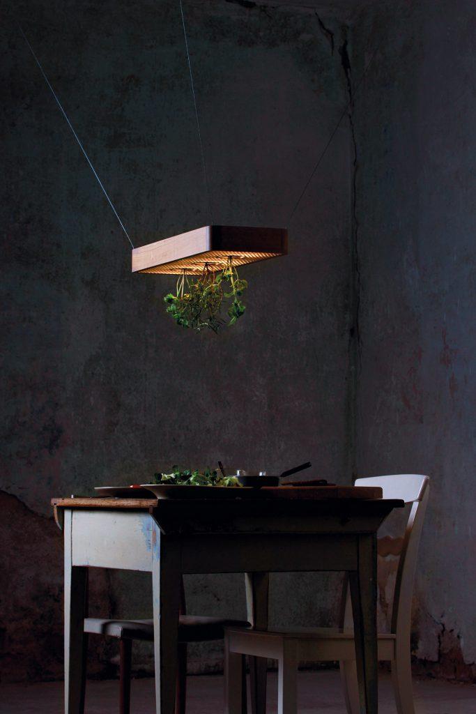 projekt-02-plantsandlights-02
